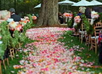 Thumbnail image for Petal Paths for your Outdoor Nuptials